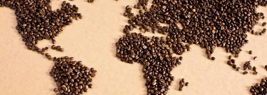 Zrod kávy: ked' červená bobuľa urobí veľké divy...
